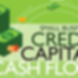 Small_Business_Credit_Capital_Cashflow.p