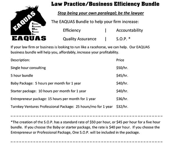 law practice efficiency bundle.jpg