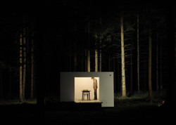 The house / wunderbaum