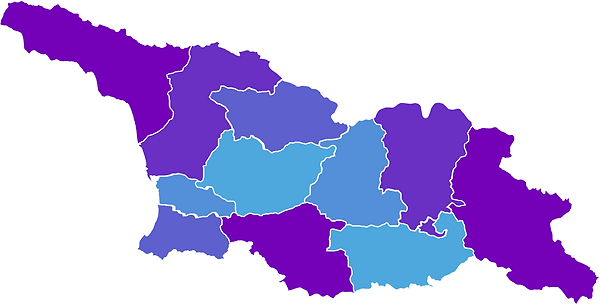 ლურჯი რუკა.png