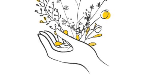Une fleur pour te dire pardon