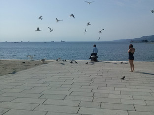 The Trieste Joyce School - Day 7