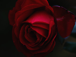 The Infinite St. Valentine's Day