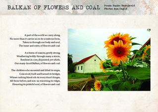 Balkan of Flowers and Coal