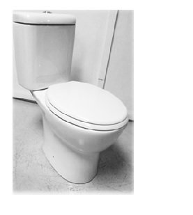 Vera Closed Coupled WC w/ PP Soft Close Seat Cover C.002