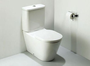 Tonic BTW 2278 CC floor standing toilet.