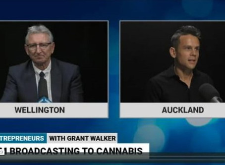 Entrepreneur's journey from radio to medicinal cannabis