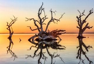 Lake Bonney.jpg