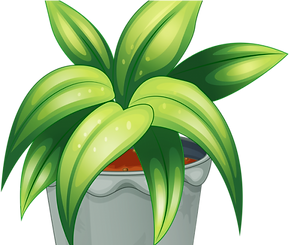 33-330244_pot-plant-clipart-flower-pot-m