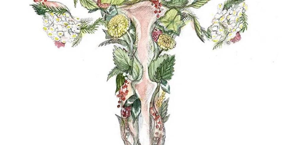Après-midi Comptoir Nature : Le cycle féminin