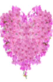 Orchid Heart 1.png