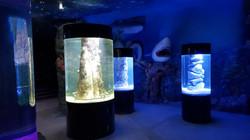 Проектирование аквариумов