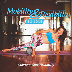 Mobility and Flexibility Online Course