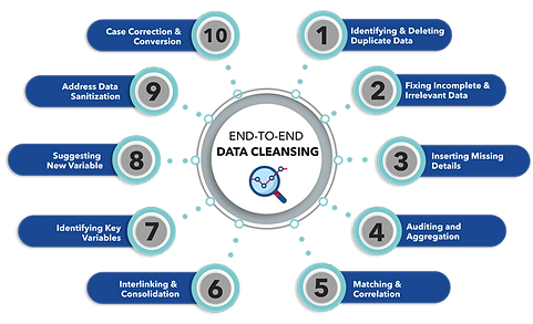 End-to-End-Data-Cleansing-infographics.p