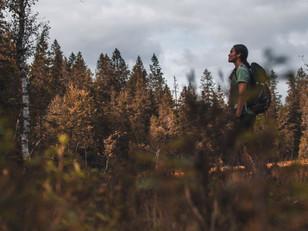 4 høsteventyr i Oslomarka
