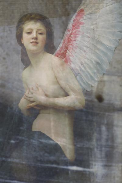 Williams Angels VI 30x20cm