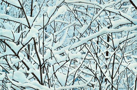 Ivar Samuelsen 37x56 cm, tegning