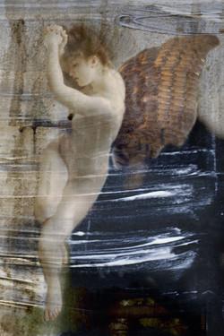 Williams Angels IV 30x20cm