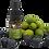 Thumbnail: 巴西莓活性防禦精華 (巴西莓角鯊烯精華) Acai Berry Active Defence Serum 15ml