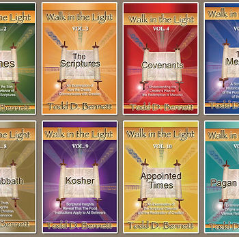 walk-in-the-light-complete-series-12vol-
