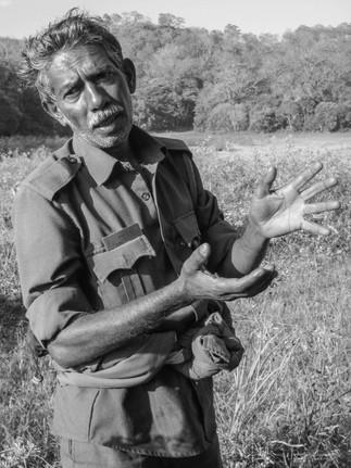 Tiger Reserve India 01