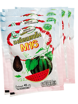 Dehydrated Watermelon Seed Size 45g. (Pack 6)