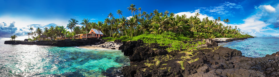 coral-reef-and-palm-trees-on-south-side-
