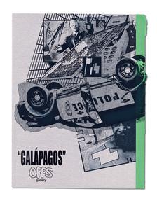 """東京を拠点に活動する気鋭のアーティストらによる合同展""""GALÁPAGOS""""が9月12日(土)からoffs gallery にて開催。"""