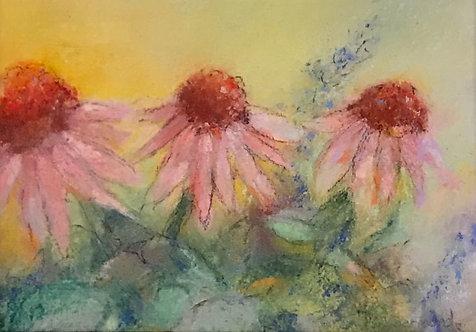 Coneflower 1  by Victoria Germond