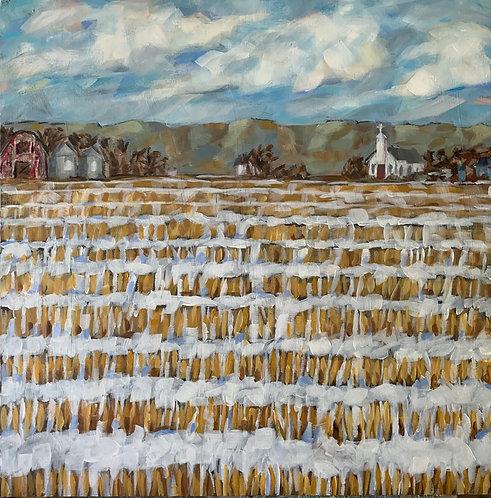 Midwest Winter Hayfield by Trish Jones