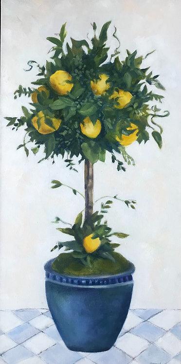 Lemon Topiary II by Victoria Germond