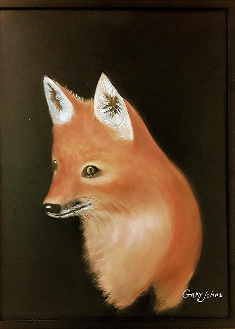 Foxy Lady by Gary Johns