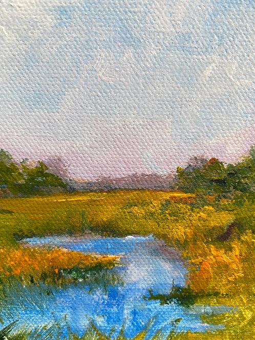 Marsh Side by Lois Grunder