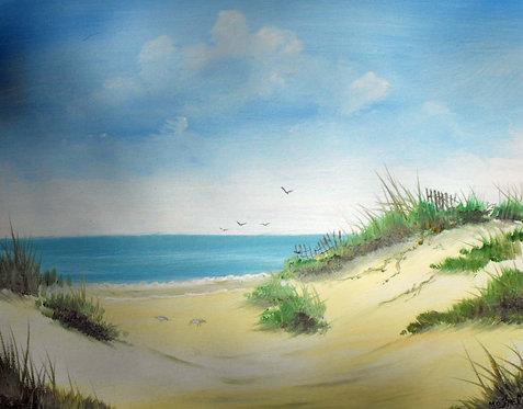 Ed Mosher - Little Talbot Island Natural Beach Access