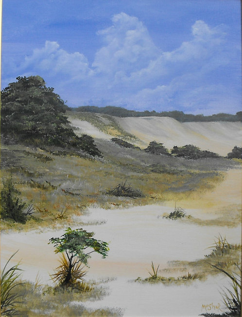 North Dune by Ed Mosher