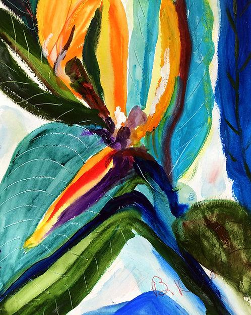 Bird of Paradise Flower by Betsy Drake Hamilton