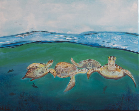 Green Sea Turtle Convention by Noelle Almond