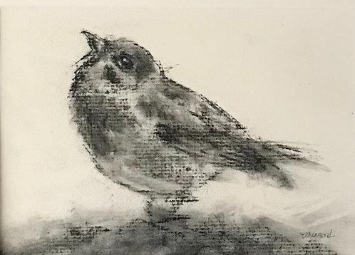 Sparrow I by Victoria Germond