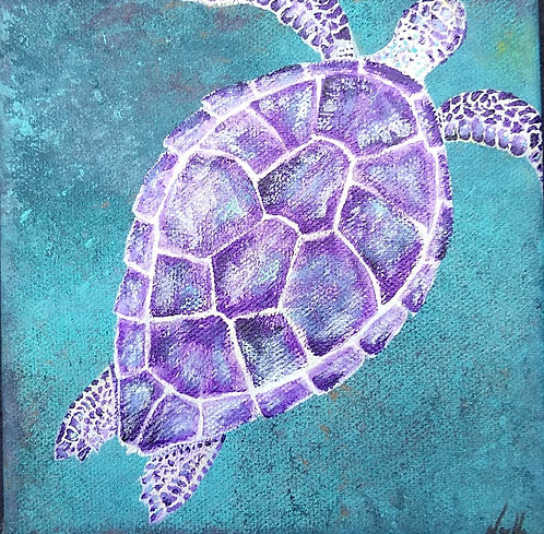Pearl the Sea Turtle by Noelle Almond