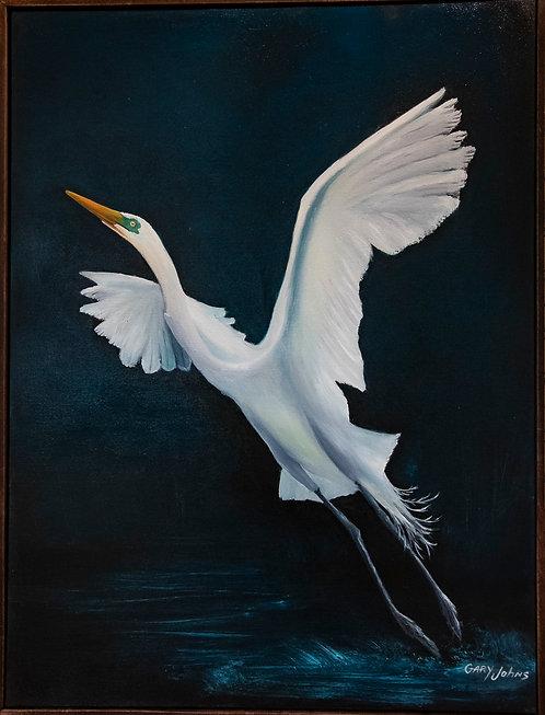 Egret in Flight by Gary Johns
