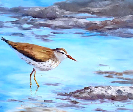 Yellow Legs  by Rebecca McDannold