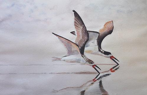 """Swoop and Scoop"" by Susan Hitchcock"