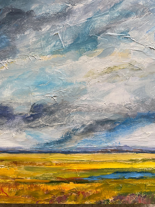 Distant Storm by Lois Grunder
