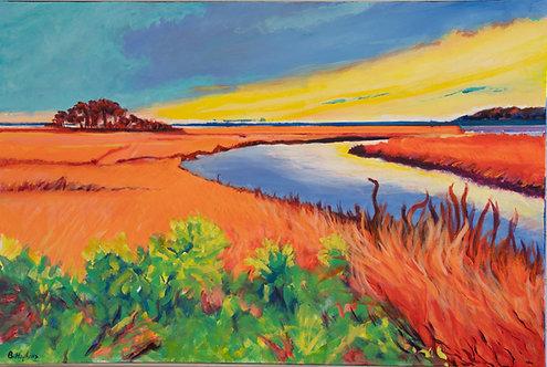 Vivid Marsh by Barbara Hopkins