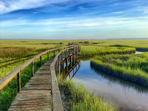 Marsh Boardwalk North by Stan Cottle