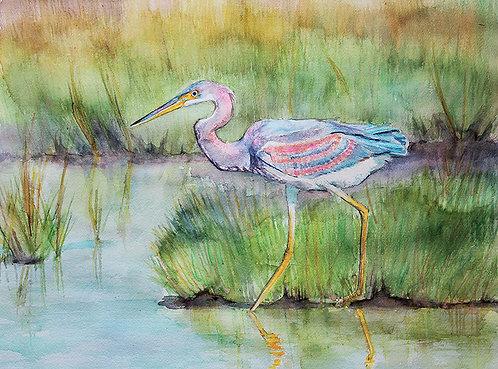 Marsh Mellow by Susan Hitchcock