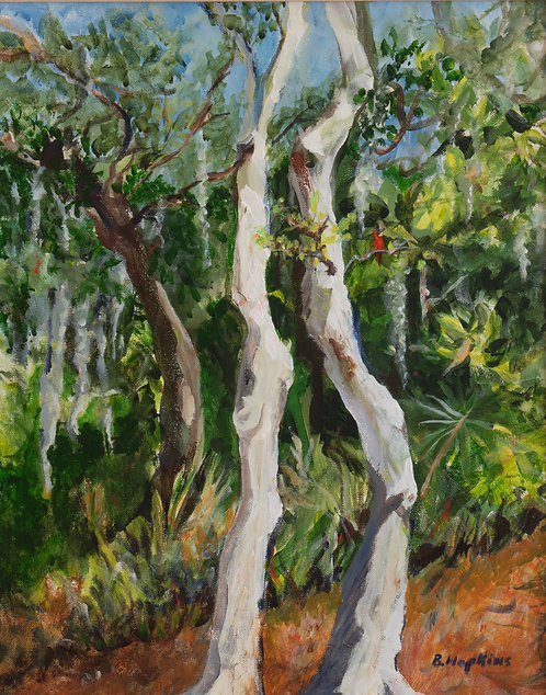 White Oaks and Spanish Moss by Barbara Hopkins