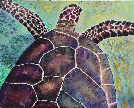 The Sea Turtle Coast by Noelle Almond