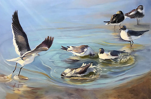 Bathing Birds by Rebecca McDannold