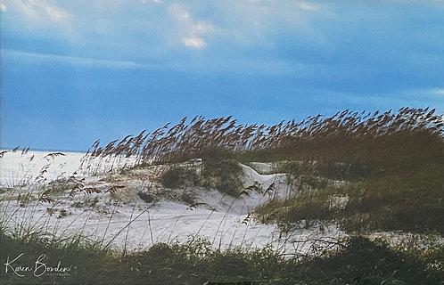 Sea Oats by Karen Bowden